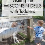 Guide to Visiting the Wisconsin Dells with Toddlers