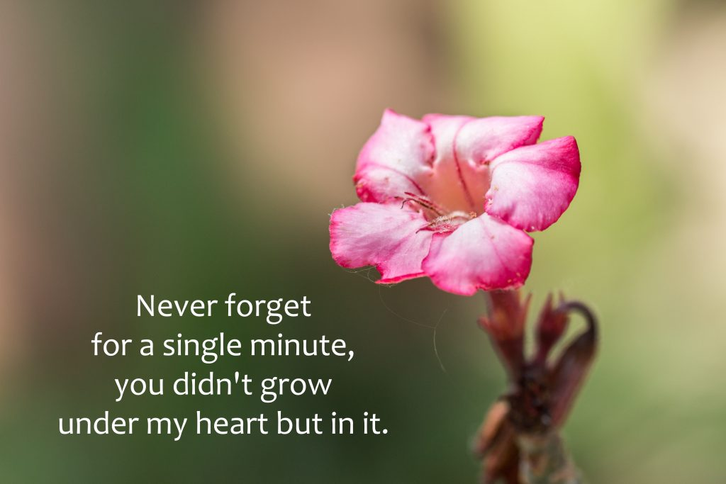 """Never forget for a single minute, you didn't grow under my heart but in it."""""""