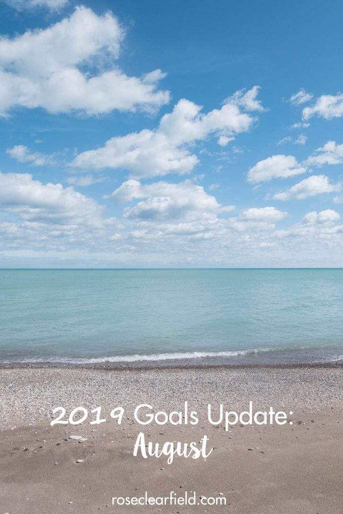 2019 Goals Update August