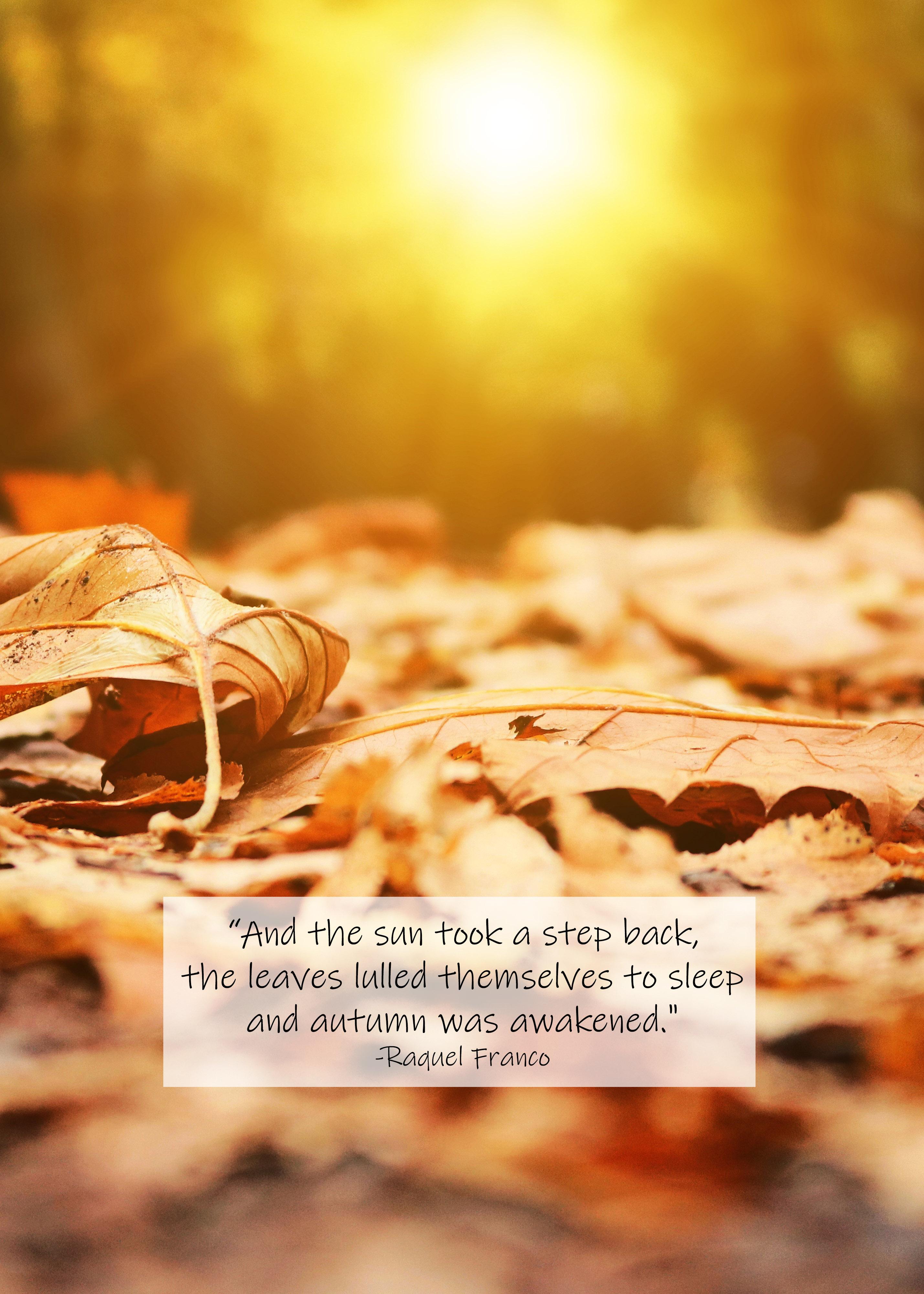 Autumn Was Awakened Raquel Franco Quote