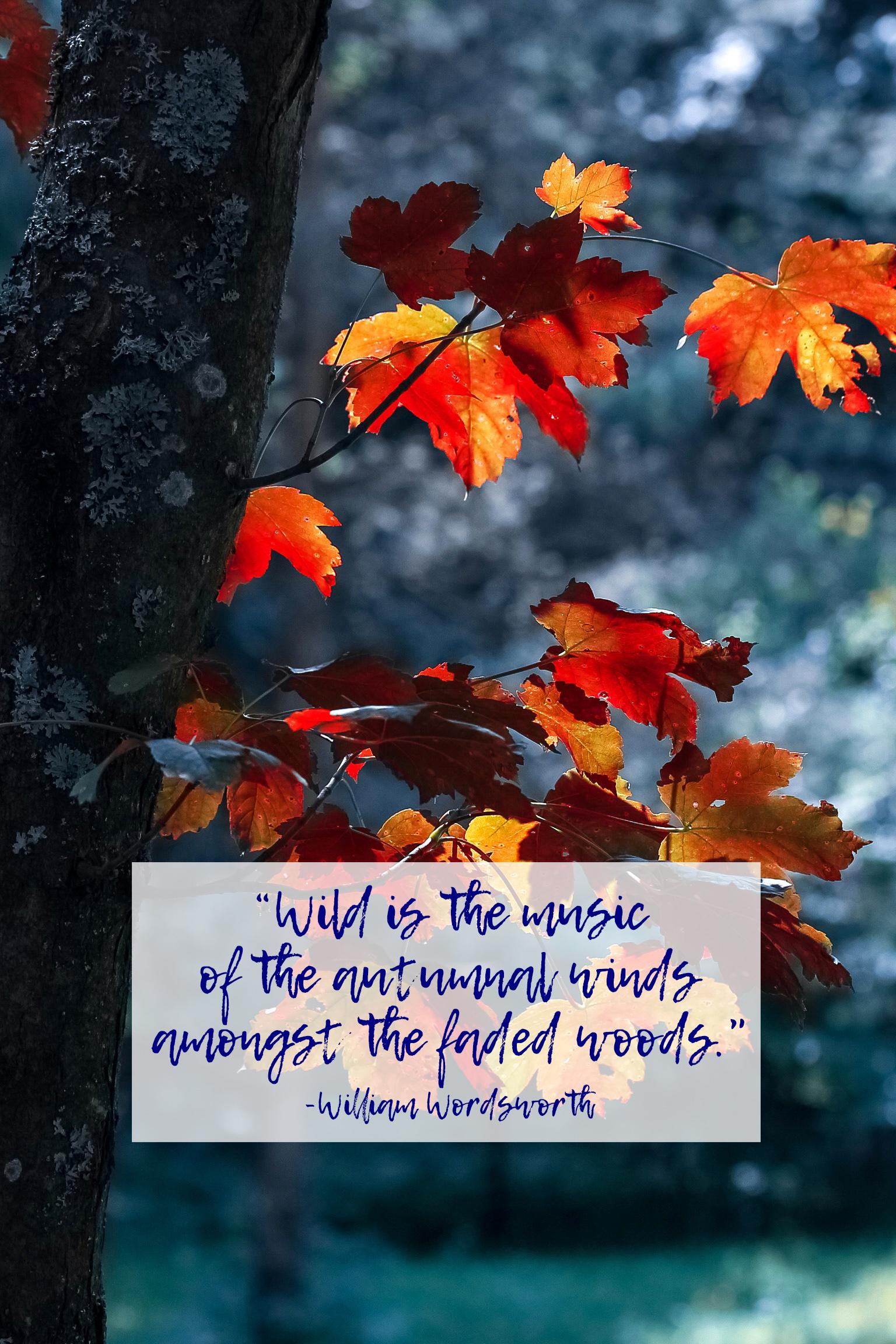 Autumnal Winds William Wordsworth Quote