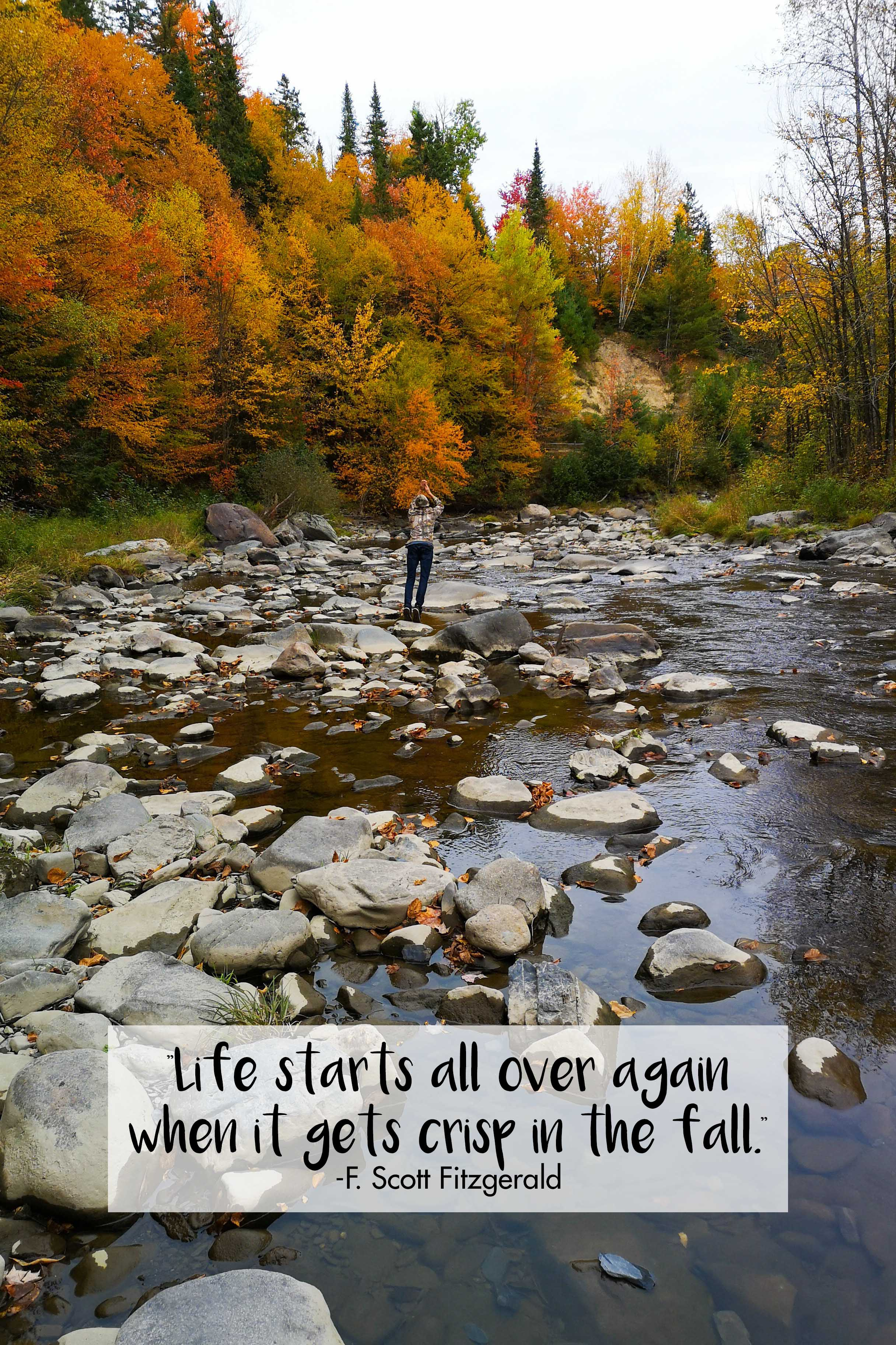 Life Starts All Over Again F. Scott Fitzgerald Quote