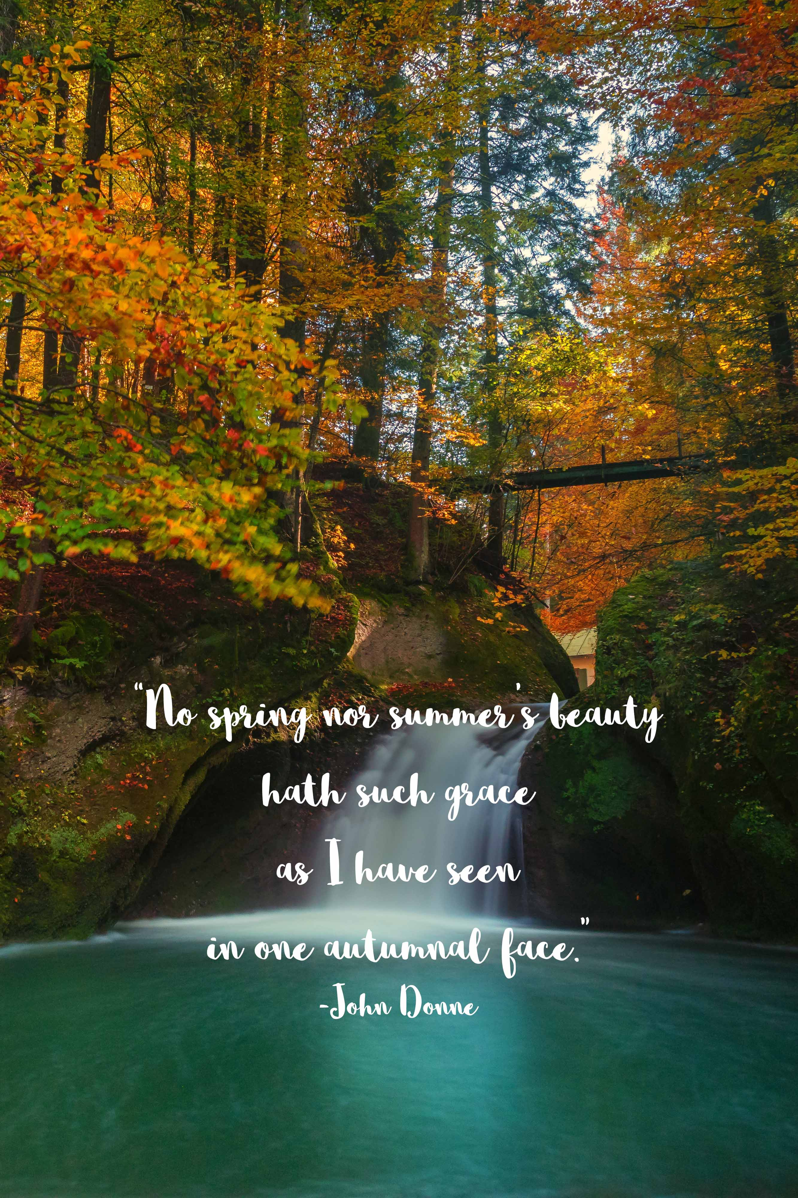 One Autumnal Face John Donne Quote