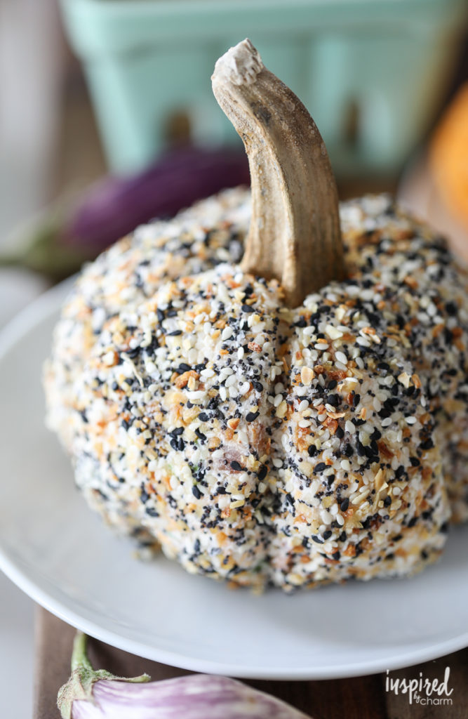 Everything Bagel Seasoned Pumpkin Cheeseball Inspired by Charm