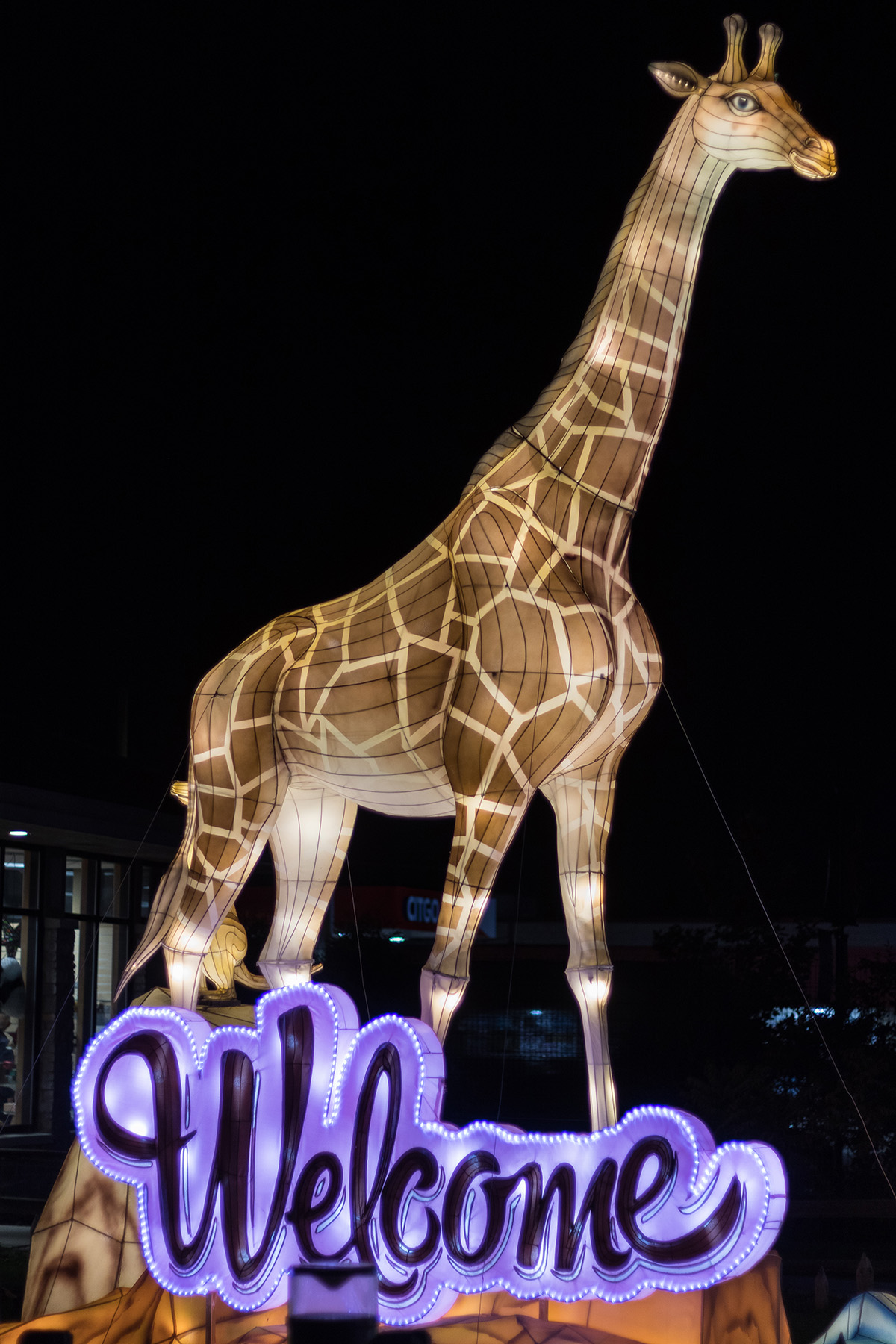 Racine Zoo Lantern Festival 2019, Racine, WI