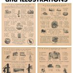 Vintage French Primer Book Pages and Illustrations