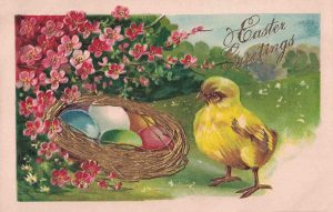 Vintage Easter Postcard Chick and Eggs