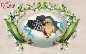 Vintage Easter Postcard Chick in an Egg