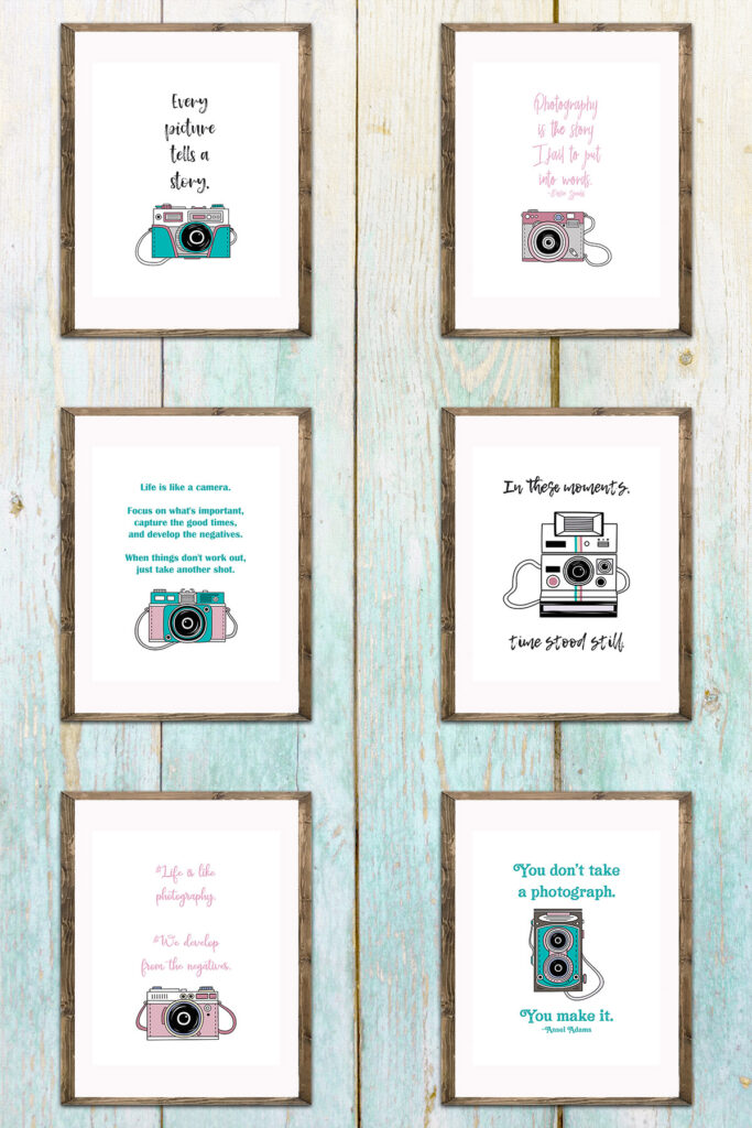 Vintage Camera Illustrations with Quotes