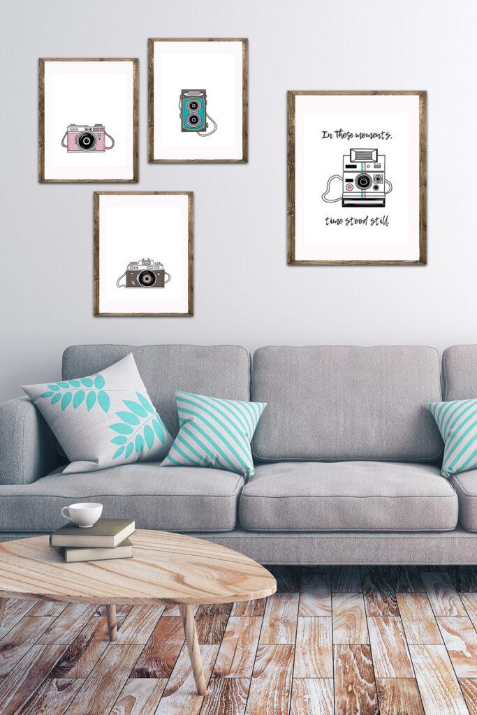 Vintage Camera Illustrations in Living Room