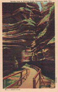 Vintage Postcard Wisconsin Dells Spooky Lane in Witches Gulch