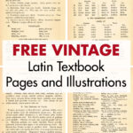 Free Vintage Latin Textbook Pages and Illustrations