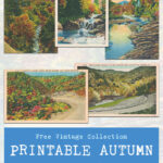 Free Vintage Collection Printable Autumn Postcards