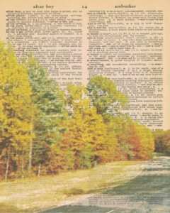 Vintage Dictionary A Page Fall Scene 8x10