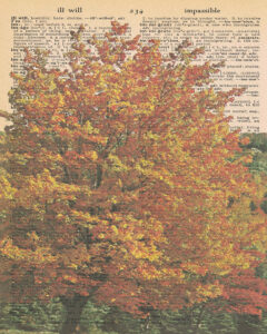 Vintage Dictionary I Page Fall Scene 8x10