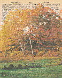 Vintage Dictionary O Page Fall Scene 8x10