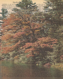 Vintage Dictionary Q Page Fall Scene 8x10