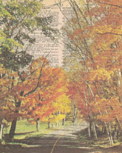 Vintage Dictionary S Page Fall Scene 8x10