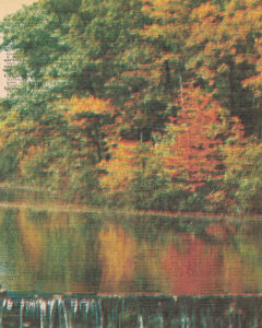 Vintage Dictionary U Page Fall Scene 8x10