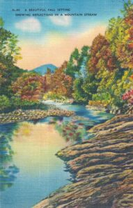 Vintage Postcard A Beautiful Fall Setting Showing Reflections in a Mountain Stream