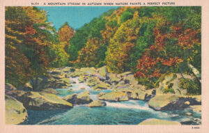 Vintage Postcard A Mountain Stream in Autumn When Nature Paints a Perfect Picture