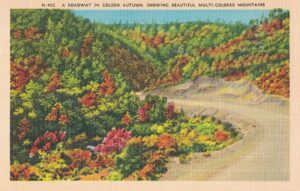 Vintage Postcard A Roadway in Golden Autumn Showing Beautiful Mutlicolored Mountains