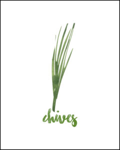 Chives With Text