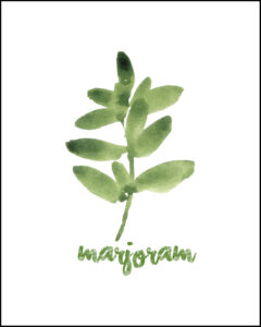 Marjoram With Text