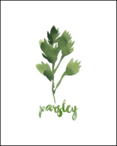 Parsley With Text