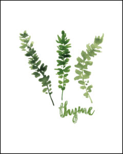 Thyme With Text