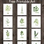 Watercolor Herbs Free Printable Art