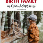 Where to Have Visits with Birth Family in Open Adoptions